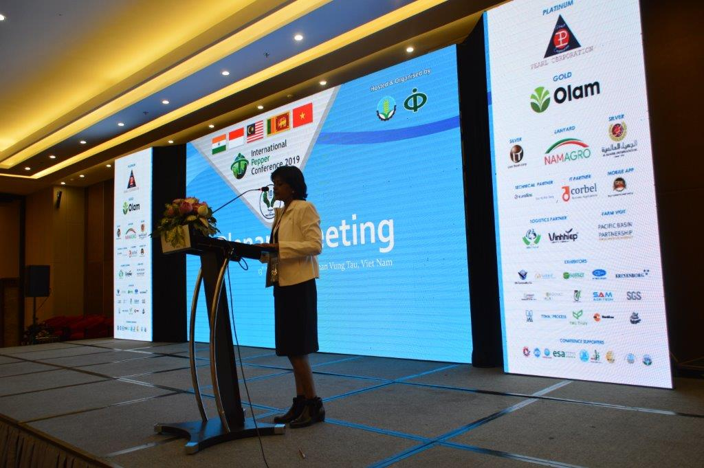 plenary-meeting-ipc-2019